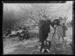cherry blossoms photog 1941